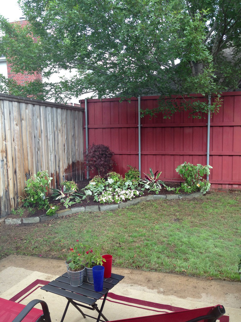 backyard-after