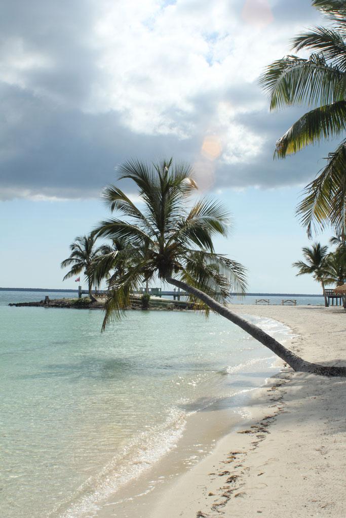 bahamas6